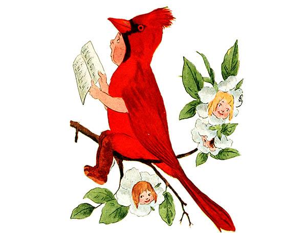 artwork of a boy in a cardinal costume