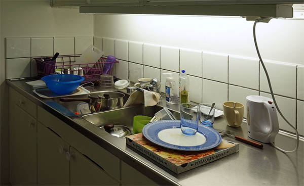 kitchen sink ants omen spiritual meaning
